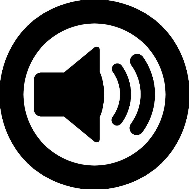Podcast Speaker